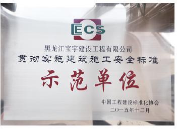 建筑施工安全标准示范单位